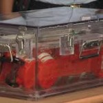 AirAsia Flight QZ8501 black boxes recovered