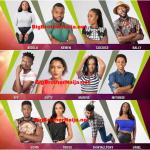 List Of Big Brother Naija House Mates