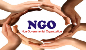 NGO Registration In Nigeria: Processes And Requirements