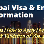 Requirements to Apply Work Visa to Dubai | Dubai Business Visa